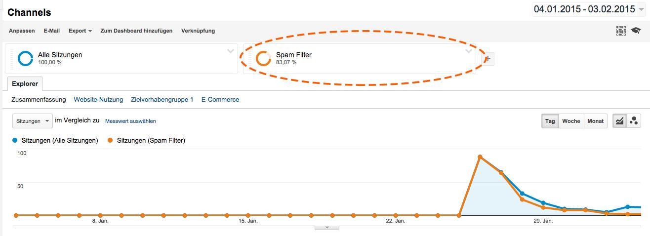 Ansicht eines von Google Analytic Spam bereinigtes Segmente.